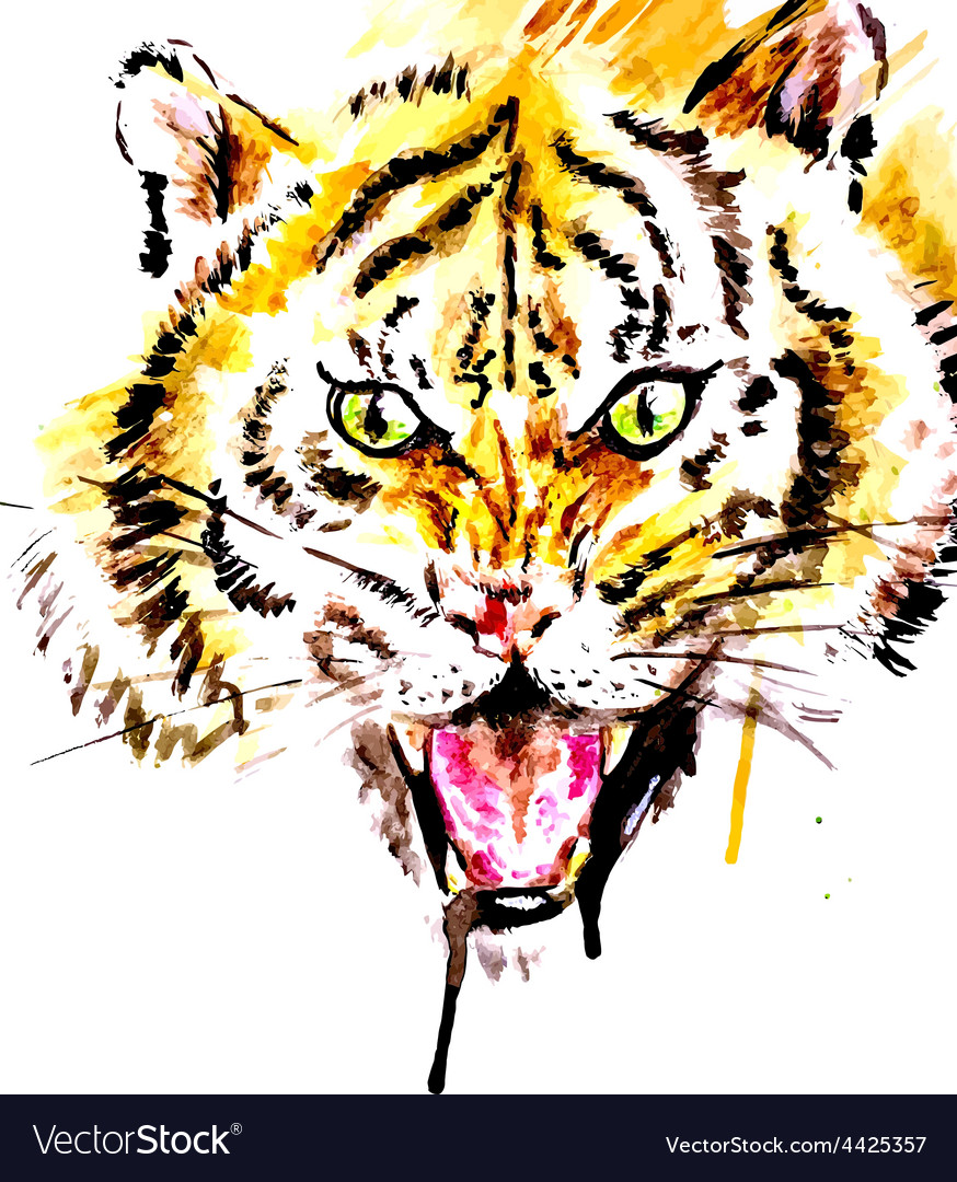Watercolor tiger vector | Price: 1 Credit (USD $1)