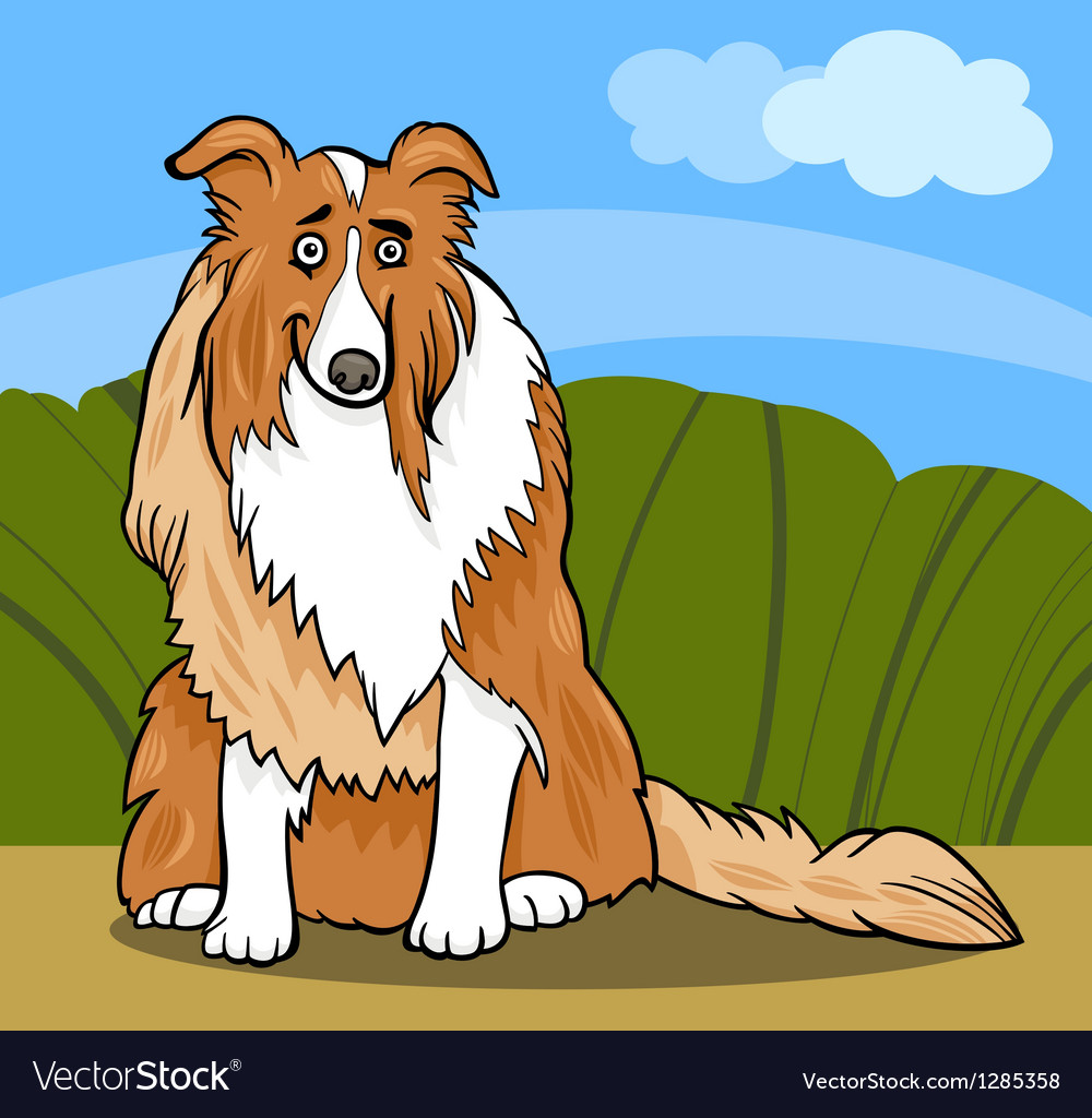 Collie purebred dog cartoon vector | Price: 1 Credit (USD $1)