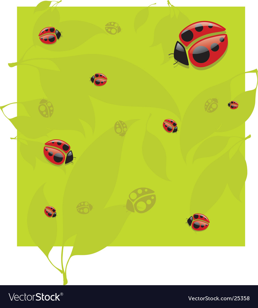 Lady bug pattern vector | Price: 1 Credit (USD $1)