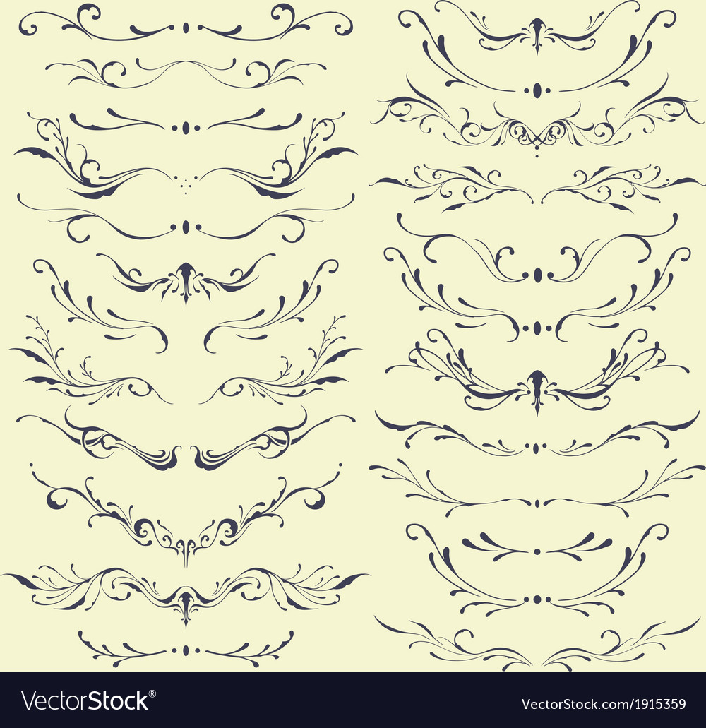 Floral divider and borders vector | Price: 1 Credit (USD $1)