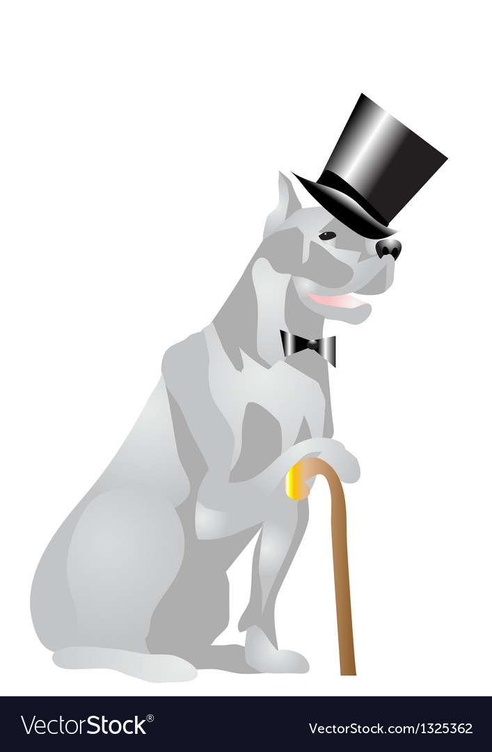 Dog in top hat vector | Price: 1 Credit (USD $1)
