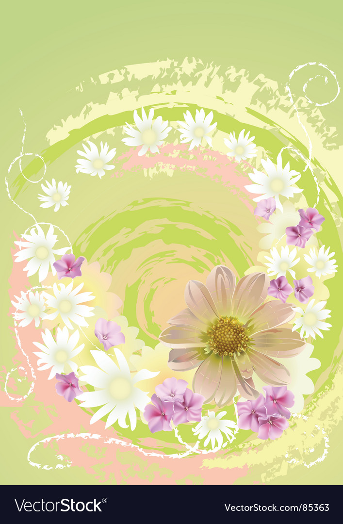 Summer daisy flower background vector | Price: 1 Credit (USD $1)