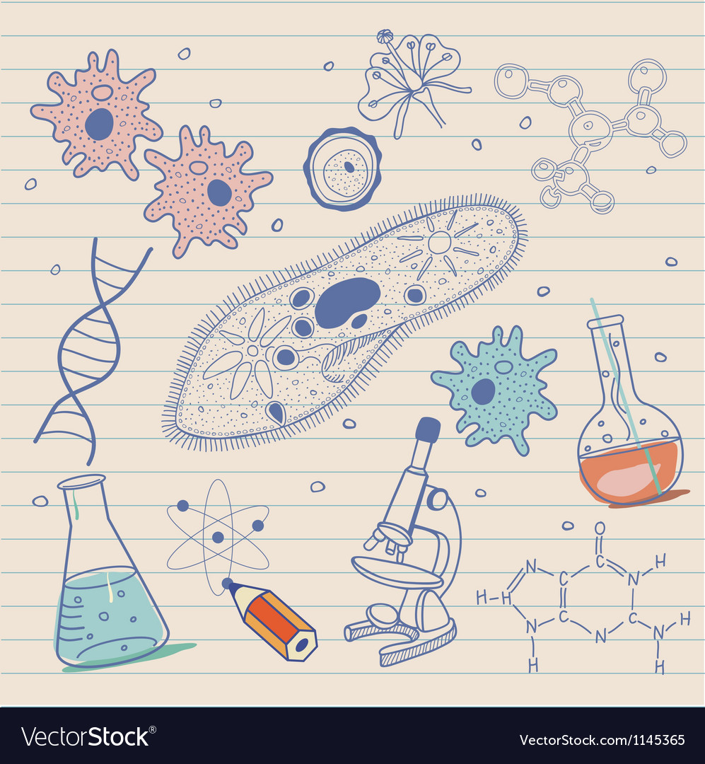 Biology sketches background in vintage style vector | Price: 1 Credit (USD $1)