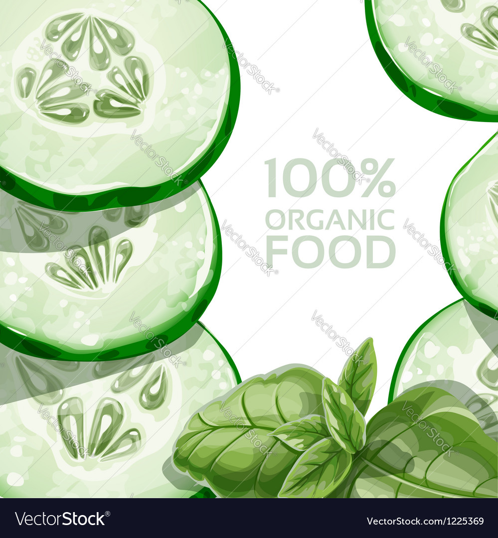 Background with green cucumber and basil vector | Price: 3 Credit (USD $3)