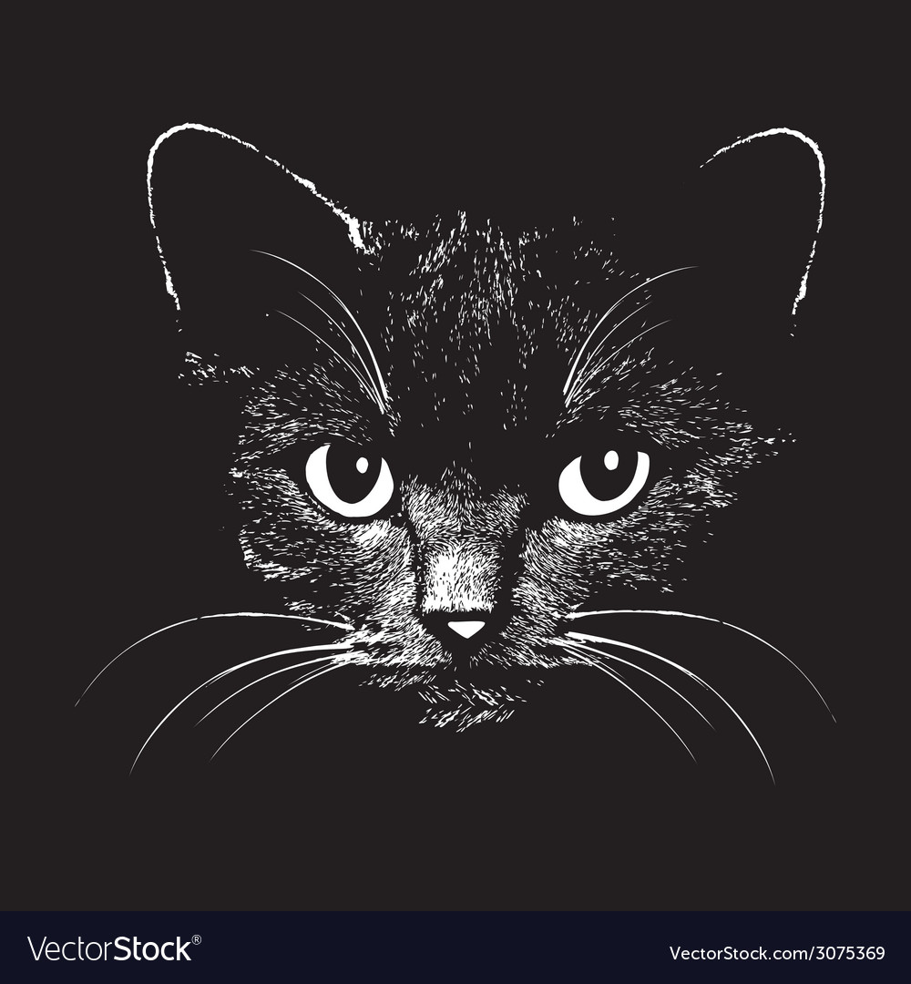 Cat head animal for t-shirt vector | Price: 1 Credit (USD $1)