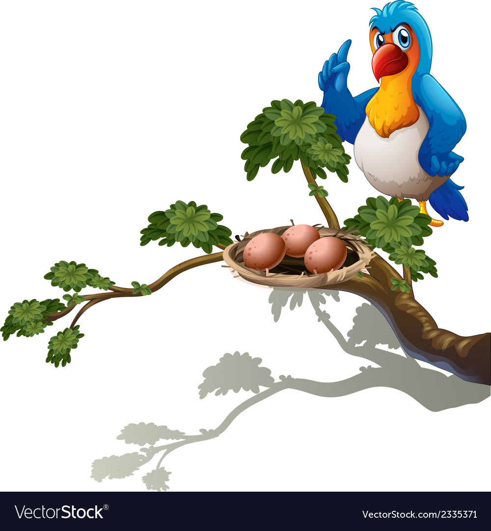 A parrot at the branch of a tree with a nest vector | Price: 1 Credit (USD $1)