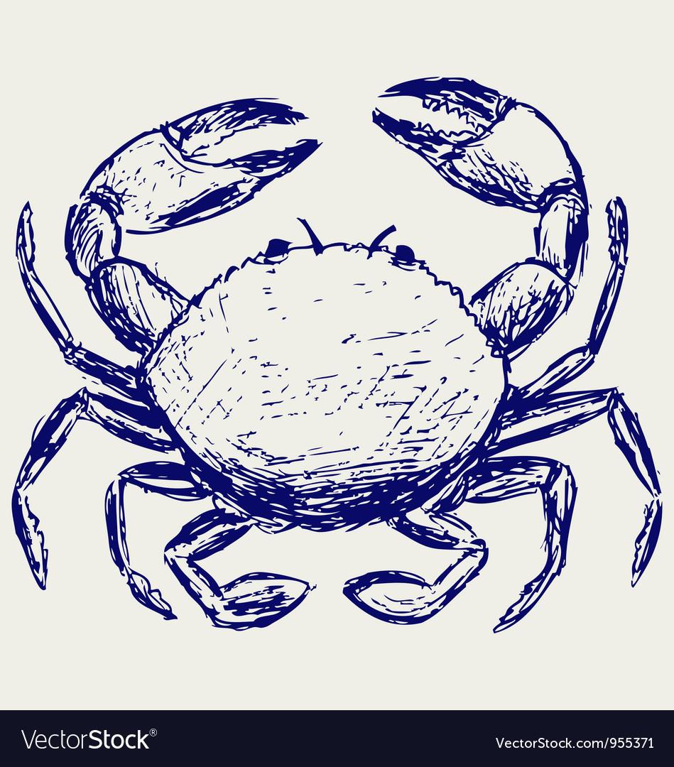 Crab sketch vector | Price: 1 Credit (USD $1)