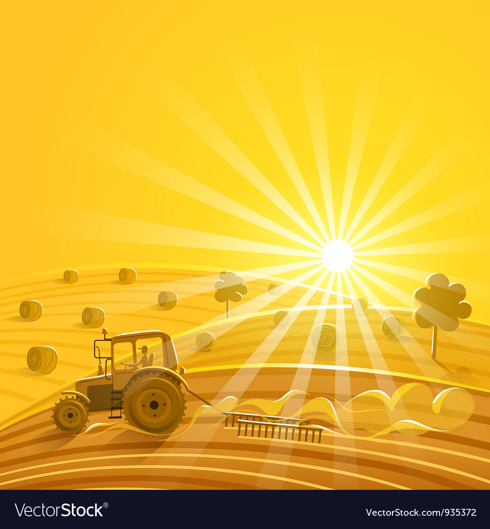 Harvesting on the sunny background vector