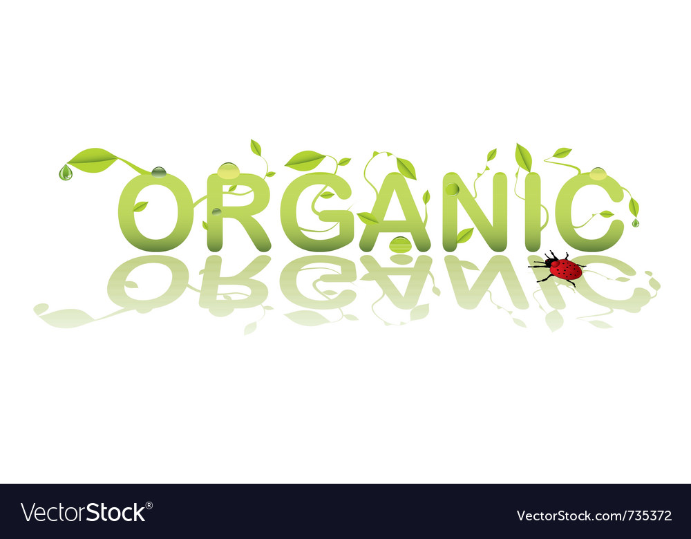 Organic shop vector | Price: 1 Credit (USD $1)