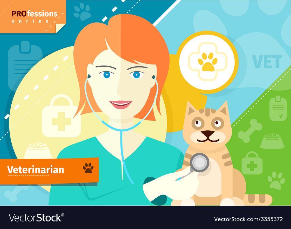 Veterinarian examining a cat with stethoscope vector | Price: 1 Credit (USD $1)