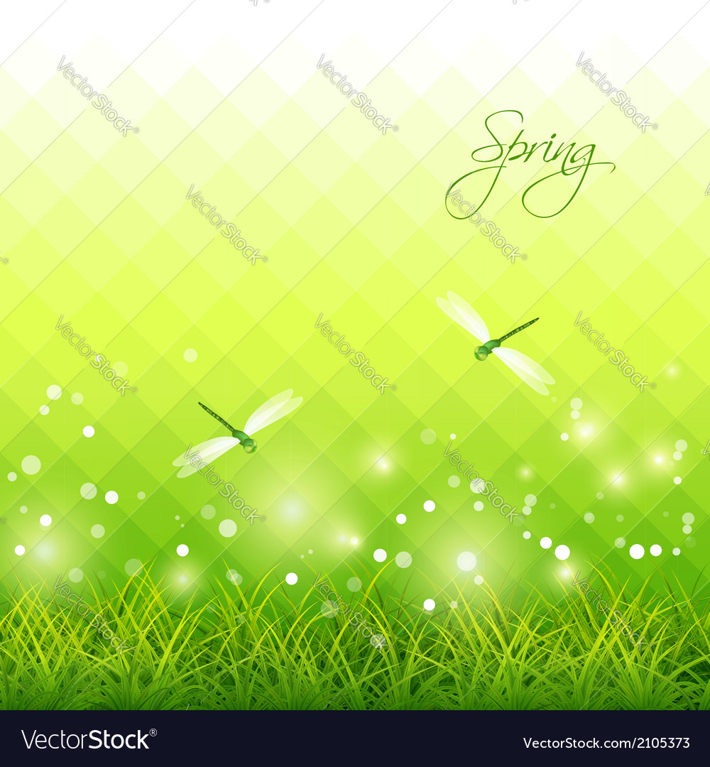 Green grass dragonfly season background vector | Price: 1 Credit (USD $1)