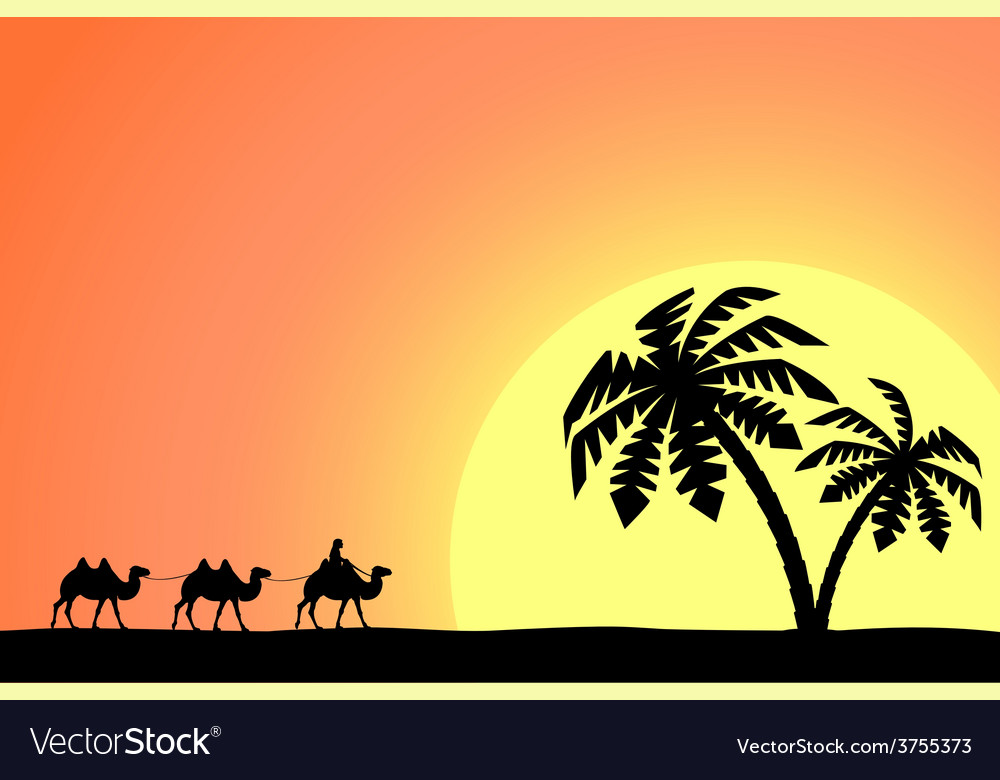 Man on the camel in palm trees at sunset vector | Price: 1 Credit (USD $1)
