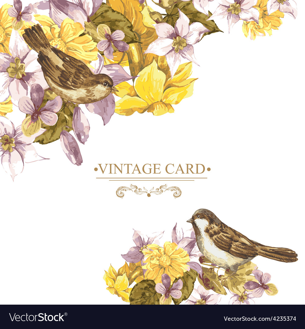 Floral retro card with bird sparrows vector | Price: 1 Credit (USD $1)