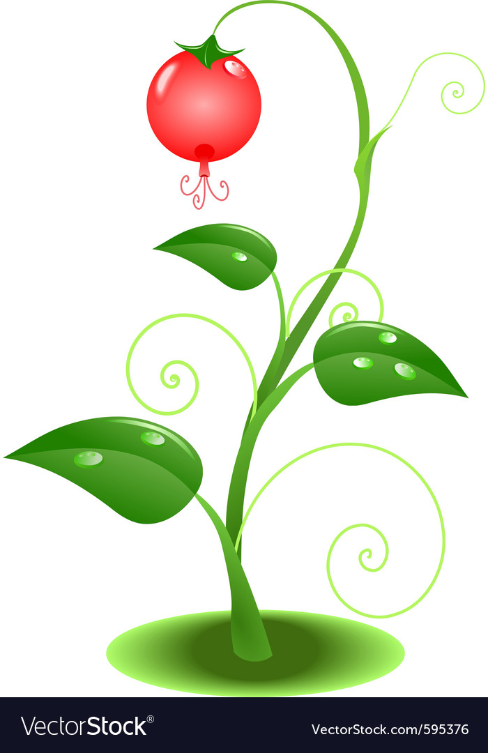 Nature plant vector | Price: 1 Credit (USD $1)