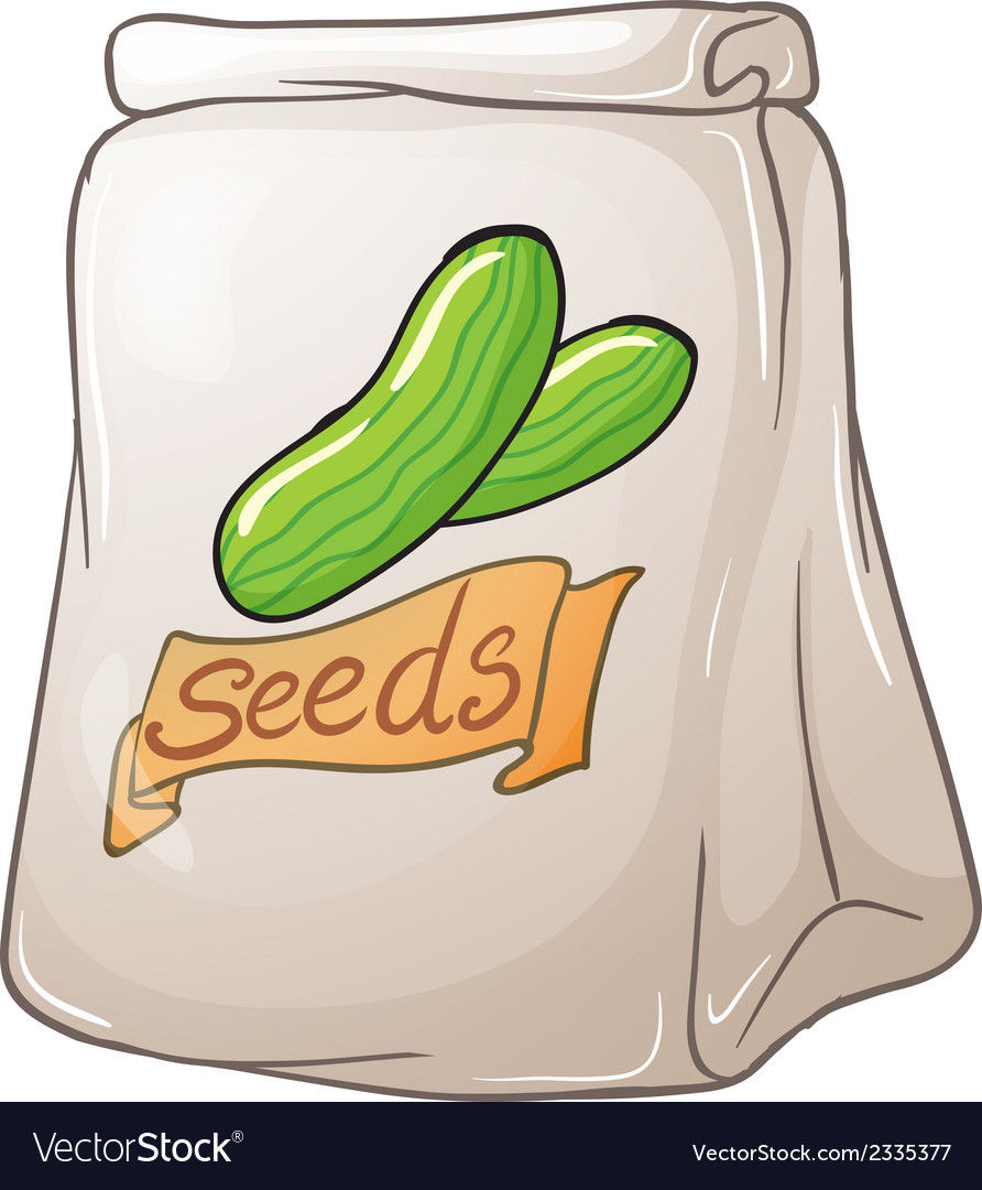 A pack of cucumber seeds vector | Price: 1 Credit (USD $1)