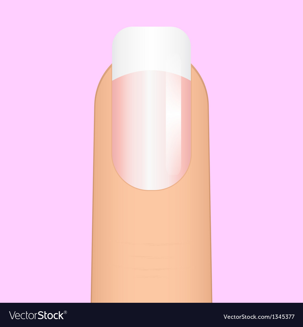 French manicure vector | Price: 1 Credit (USD $1)