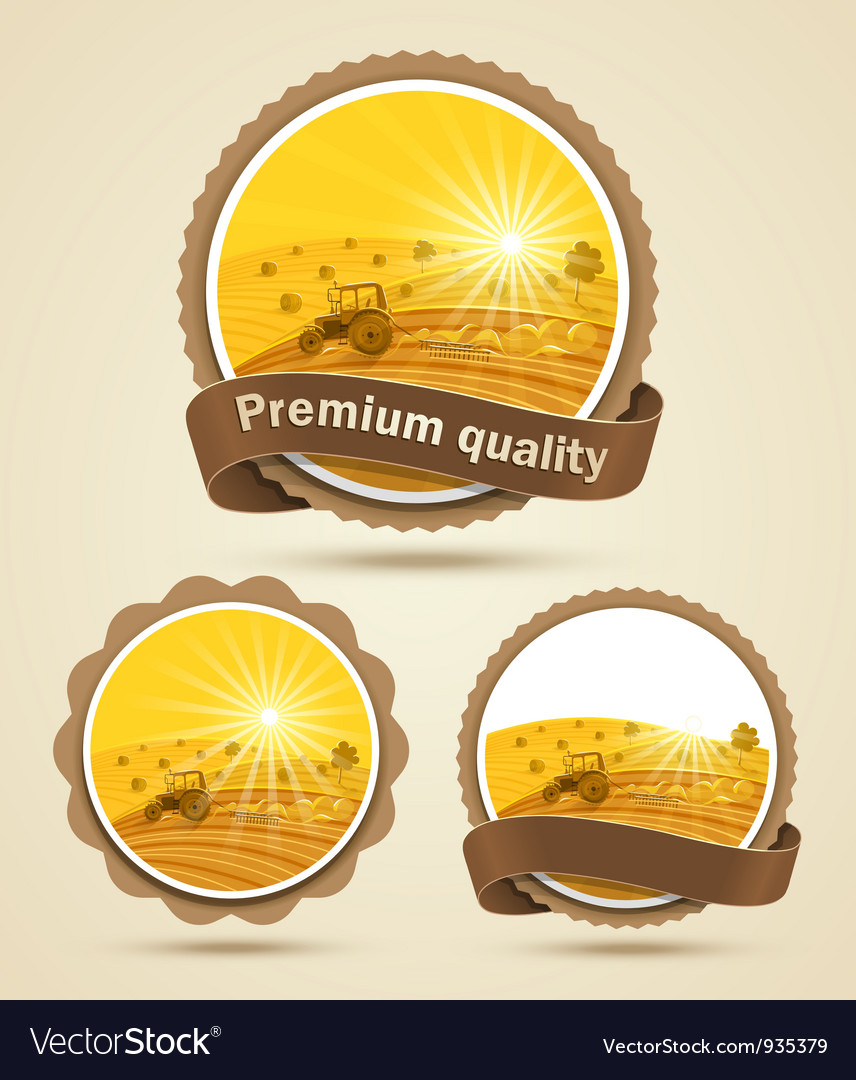 Cereal harvest label vector | Price: 3 Credit (USD $3)