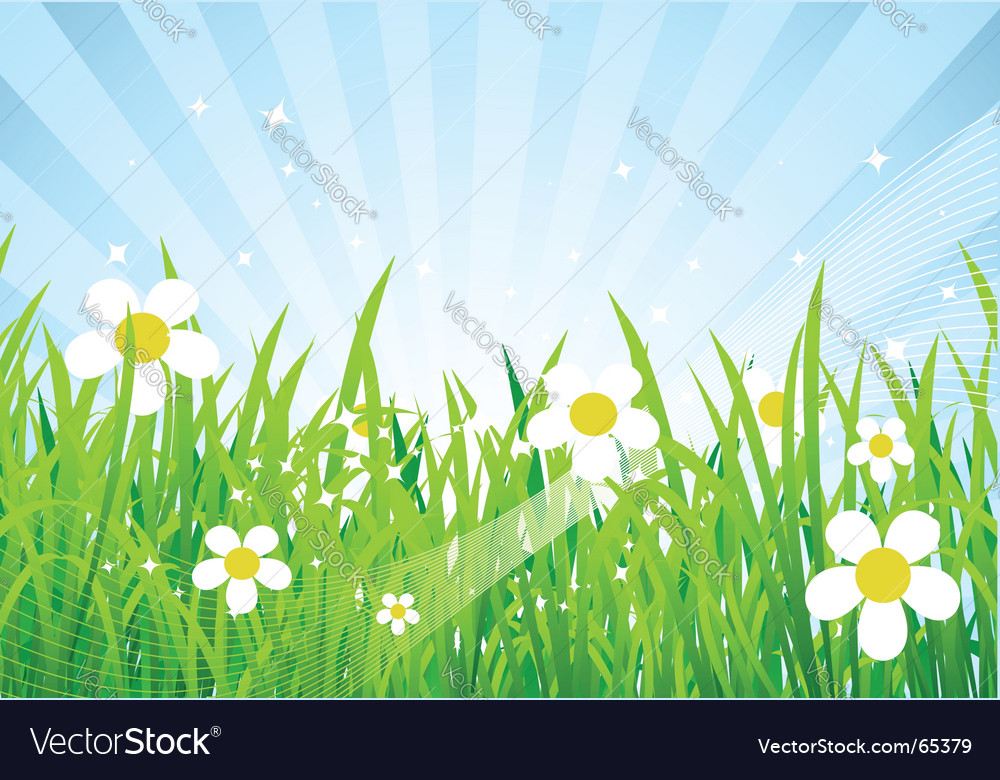 Spring meadow beautiful vector | Price: 1 Credit (USD $1)