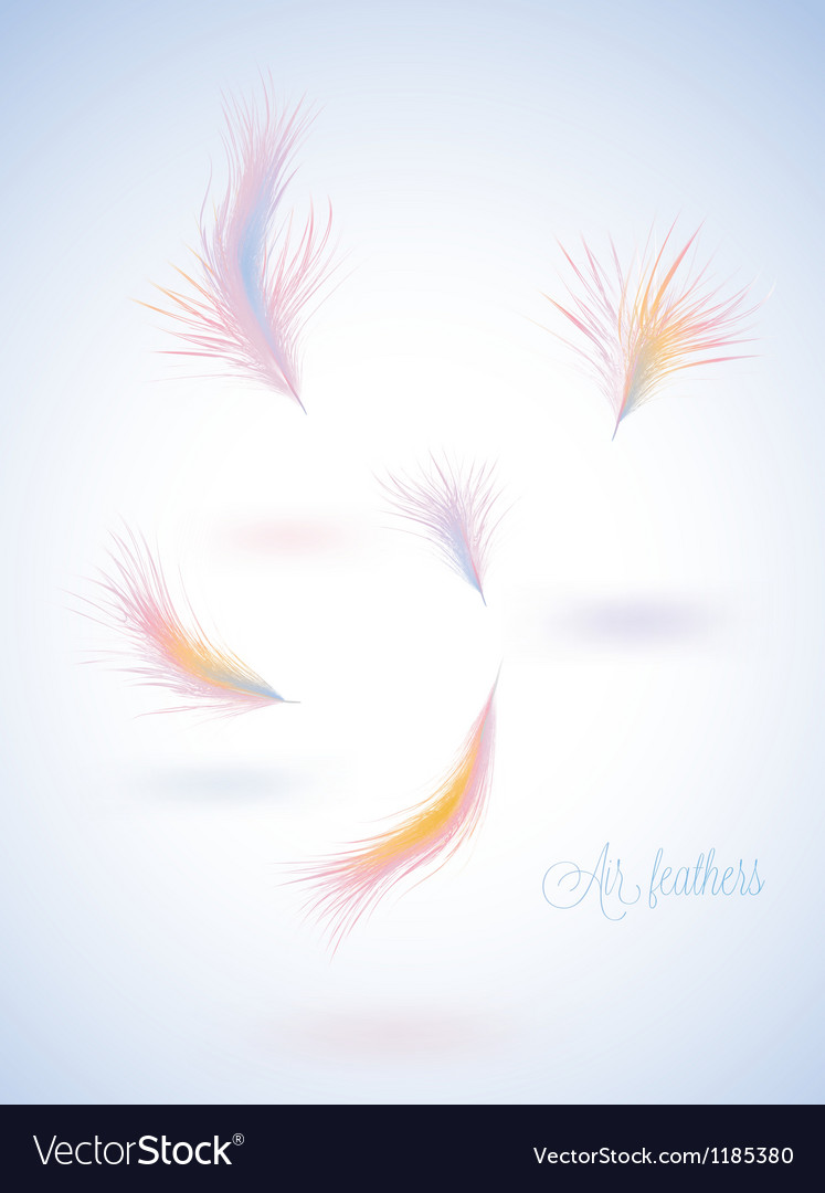 Set of warm colors fluffy feathers vector | Price: 1 Credit (USD $1)