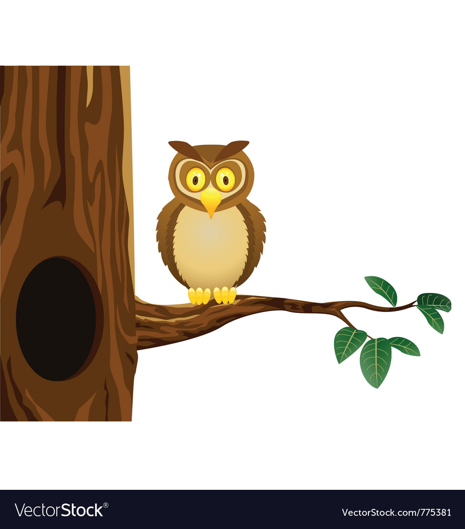 Owl cartoon vector | Price: 3 Credit (USD $3)