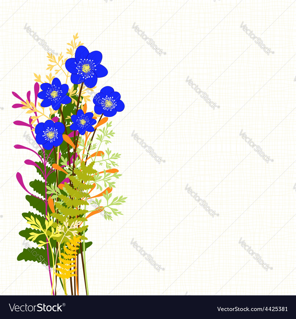 Springtime blue hepatica nobilis and wild grass vector | Price:  Credit (USD $)