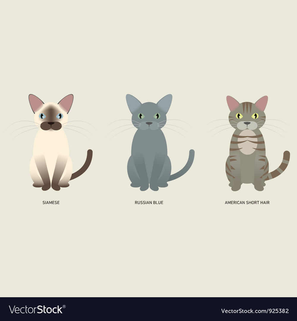 3 cats vector | Price: 1 Credit (USD $1)