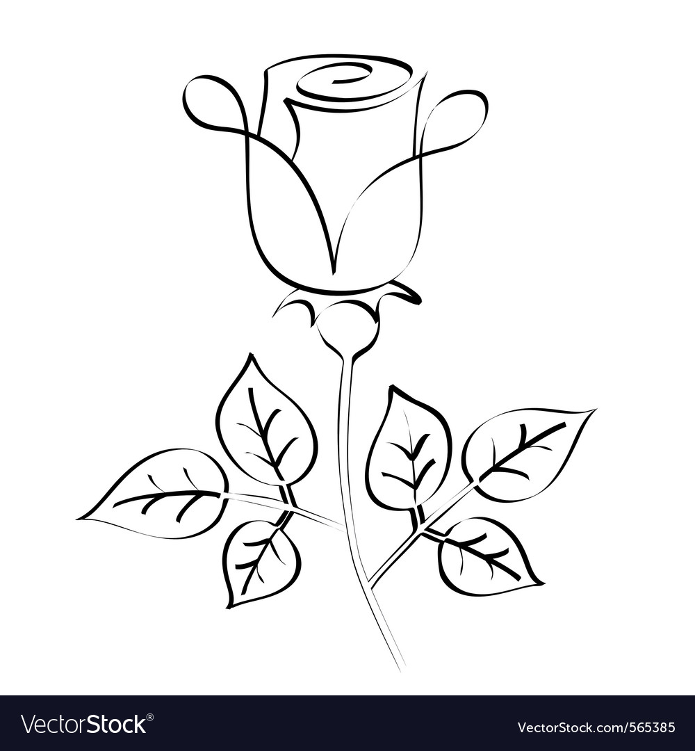 Calligraphy rose vector | Price: 1 Credit (USD $1)