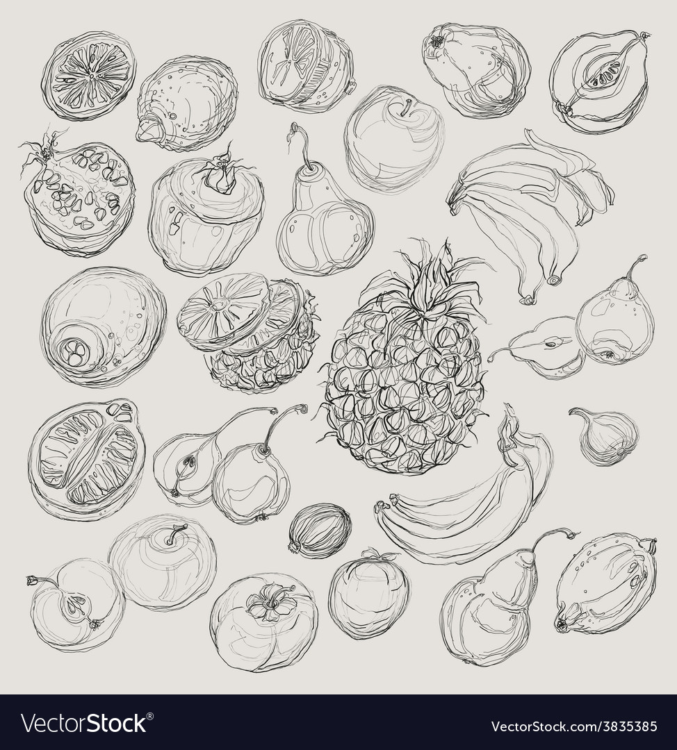 Set of fruits freehand drawing vector | Price: 1 Credit (USD $1)