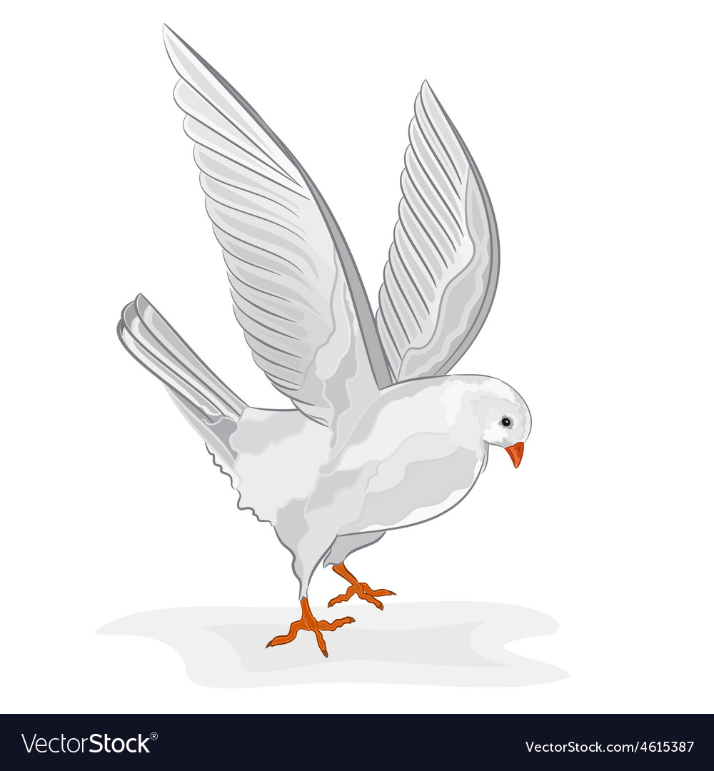 White pigeon in flight wite dove symbol peace vector | Price: 1 Credit (USD $1)
