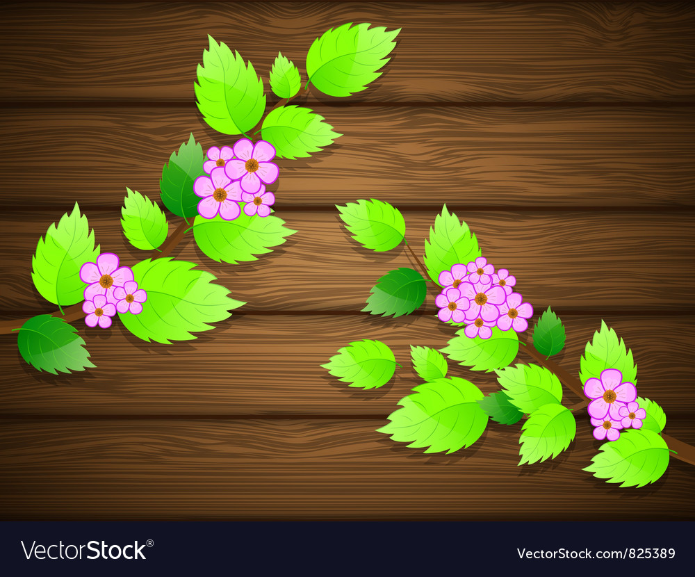 Blossoming cherry vector | Price: 3 Credit (USD $3)