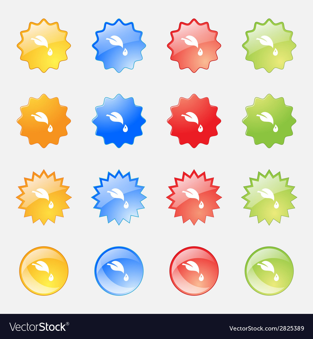 Leaf sign icon fresh natural product symbol set vector | Price: 1 Credit (USD $1)