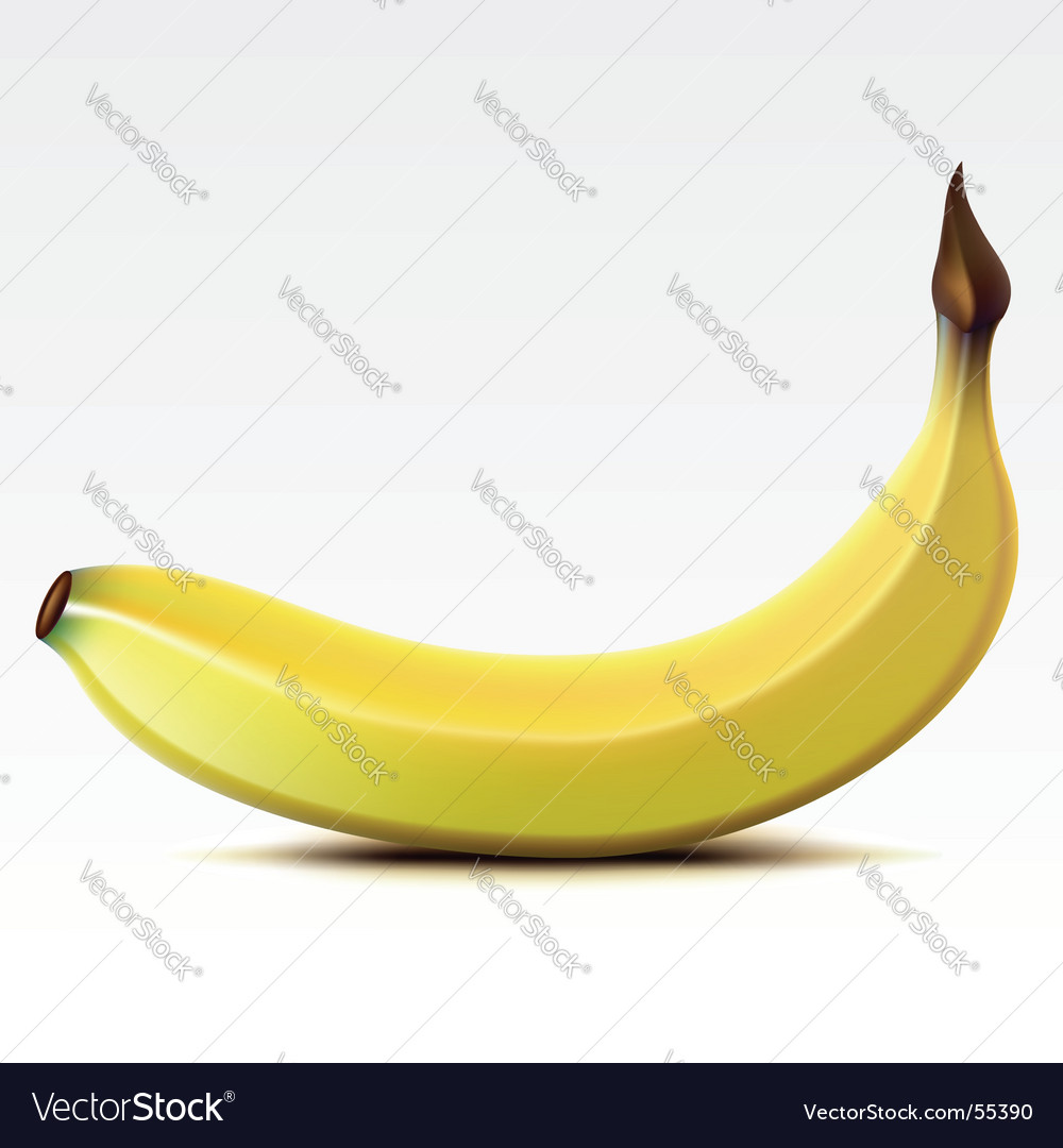 Banana vector | Price: 3 Credit (USD $3)