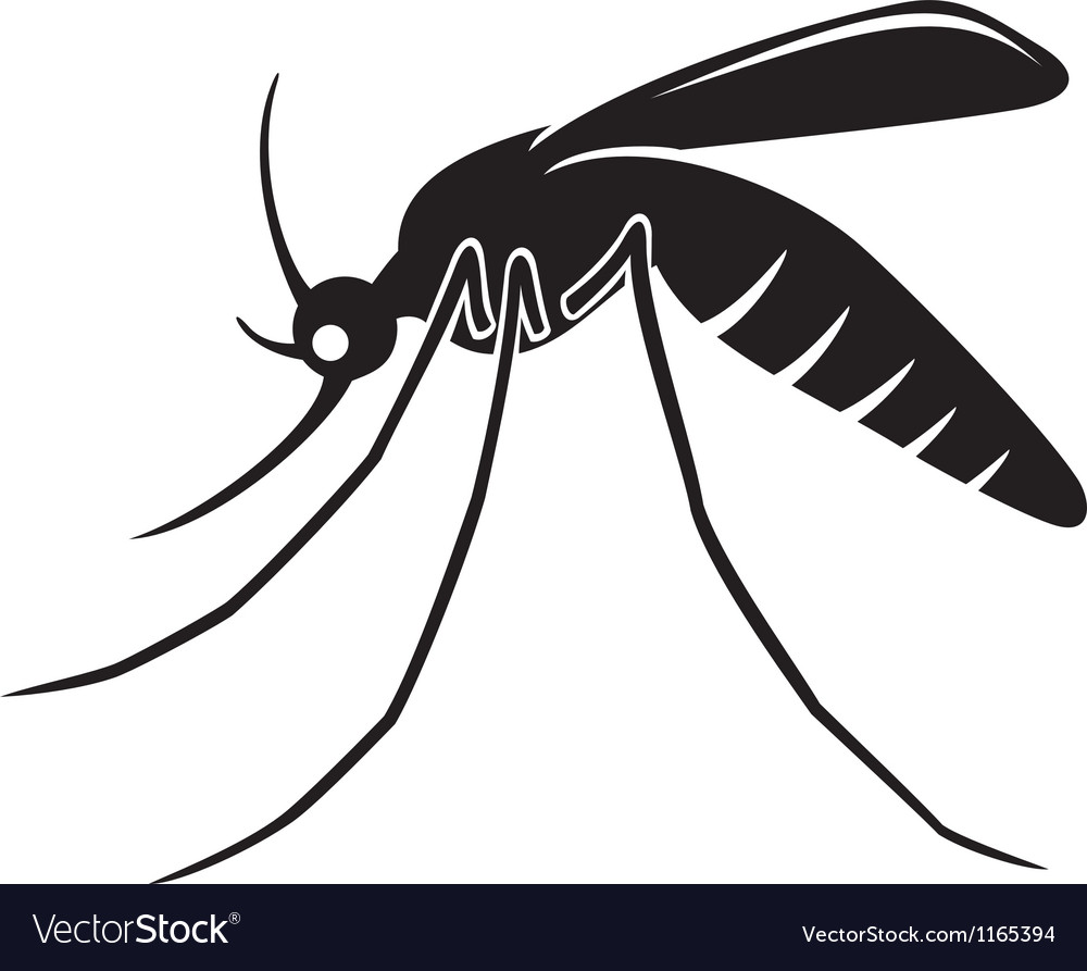Mosquito vector | Price: 1 Credit (USD $1)