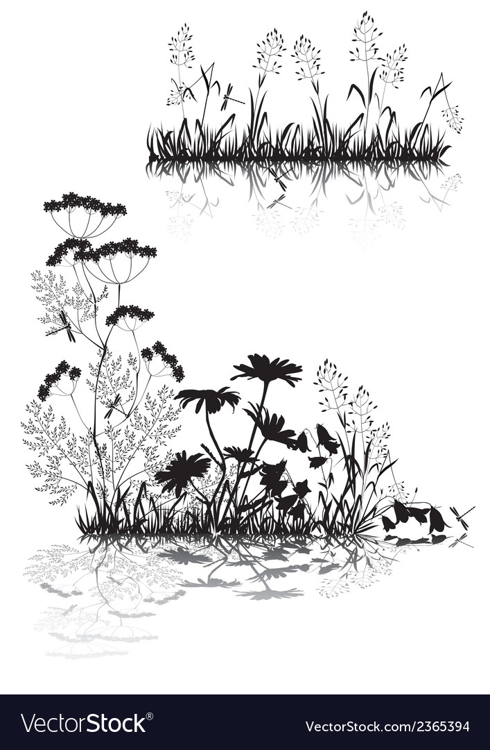 Silhouettes of grass and flowers vector | Price: 1 Credit (USD $1)