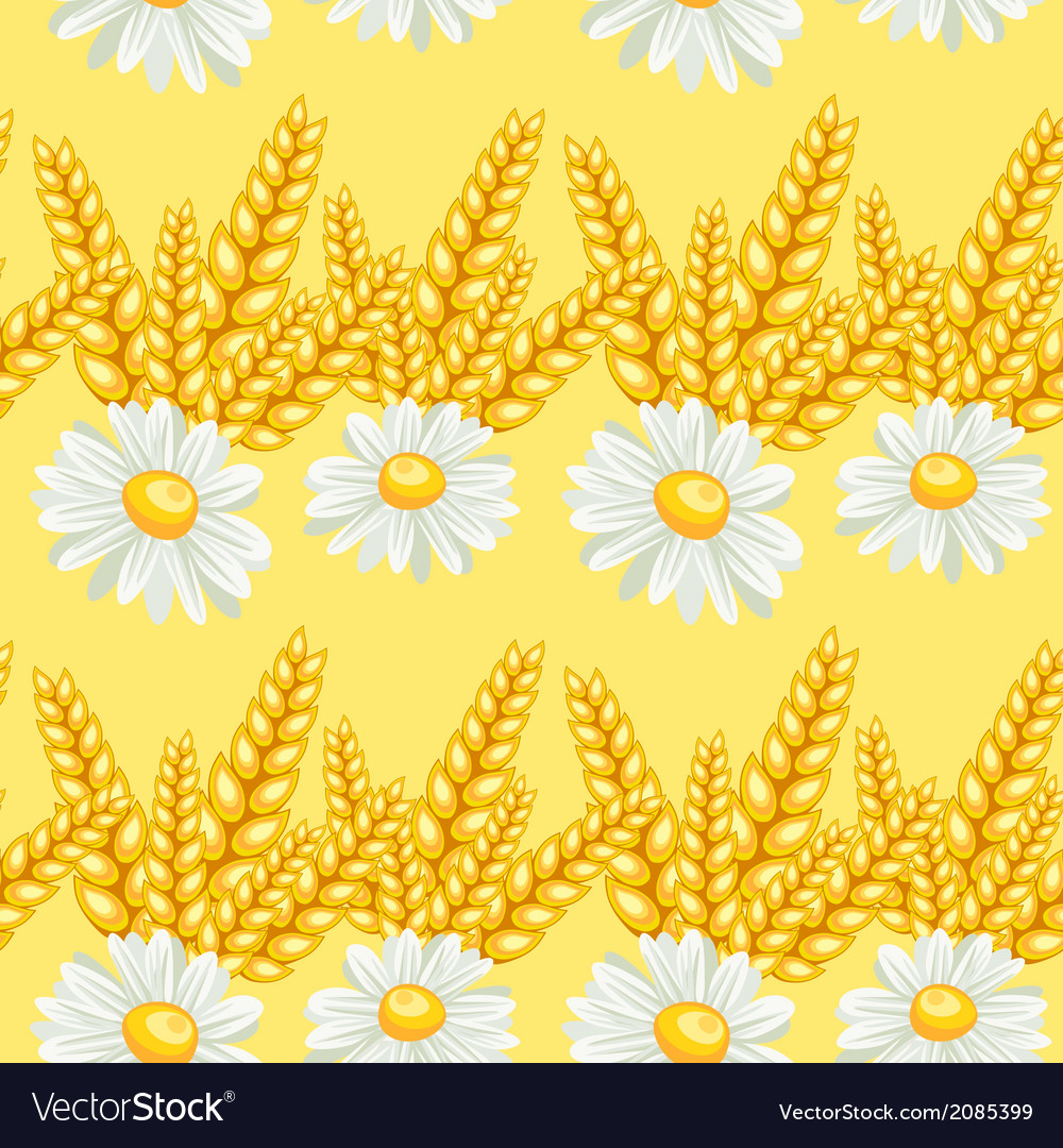 Summer chamomile field seamless pattern vector | Price: 1 Credit (USD $1)