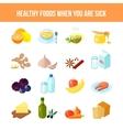 Healthy food icon flat vector