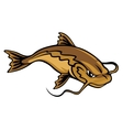 Angry catfish vector