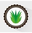 Leafs icon design vector