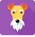 Fox terrier dog icon flat design vector