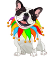 French bulldog wearing a colorful collar vector