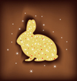 Magic easter rabbit vector