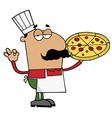 Pleased hispanic pizza chef vector