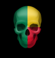 Beninois flag skull vector