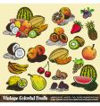Vintage colorful fruits collection vector