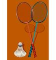Two badminton rackets and shuttlecock vector
