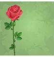 Vintage floral background with flower rose vector