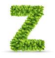 Letter z alphabet of green leaves vector