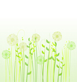 Floral background meadow vector