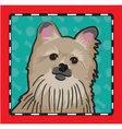 Pomeranian cartoon vector