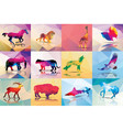 Collection of geometric polygon animals horse lion vector